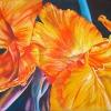 CANNA BOLD 1.acrylic.16×20