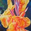 CANNA BOLD 2.acrylic.24×18