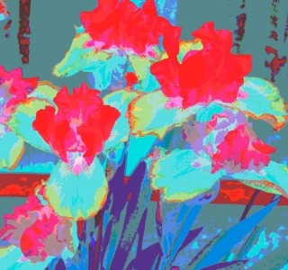 Electric Irises.Digital Image. Dockrill